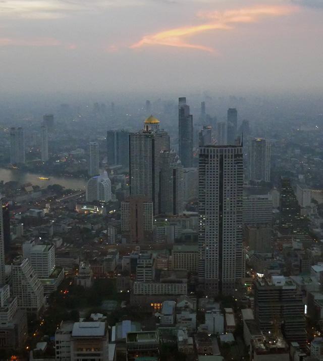Dampak PM 2.5 pada kulit
